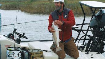 Episode 1: South Texas Redfish & Flounder