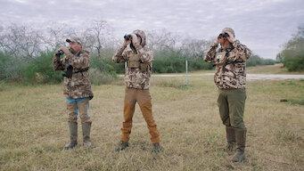 Episode 2: South Texas Nilgai